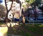 giardinooliva4
