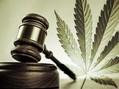 Cannabis-pro-e-contro