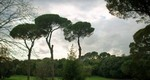 Villa Ada Roma