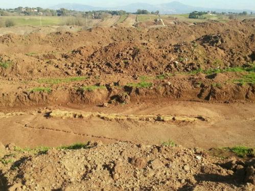cecchignoa scavi