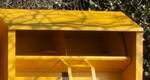 cassonetti-gialli