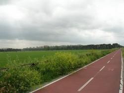pista ciclabile roma