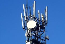 antenna repertorio srb