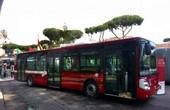 autobus repertorio roma