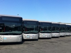 bus ecologici roma